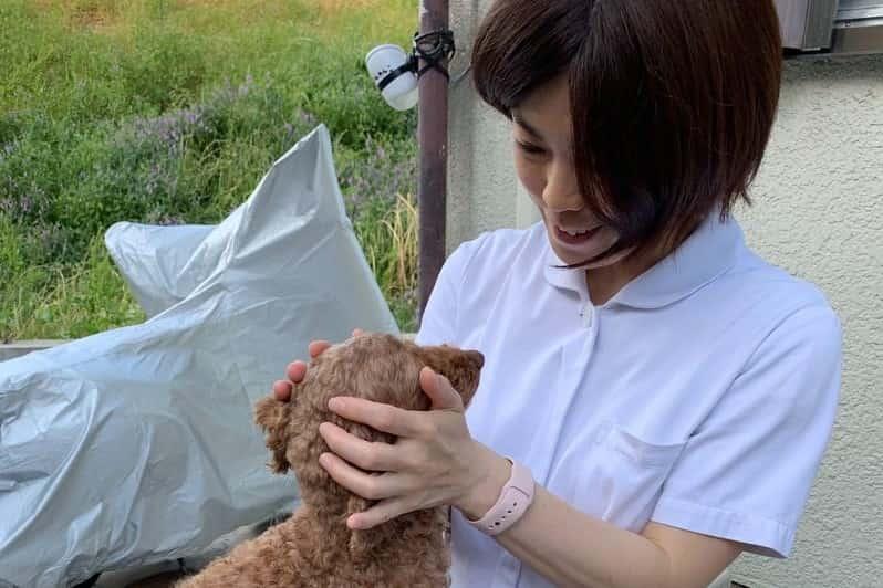 保護犬の顔を触る看護師